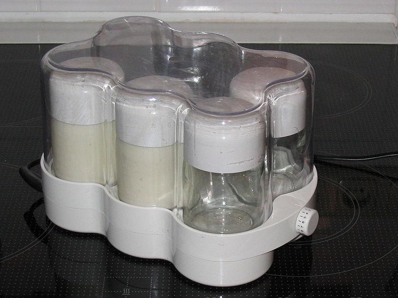 yaourtière yaourts faciles et bio